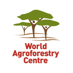 Accelerating Adoption of Agroforestry (Triple A)